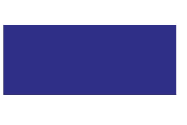 Top Fleet 2020